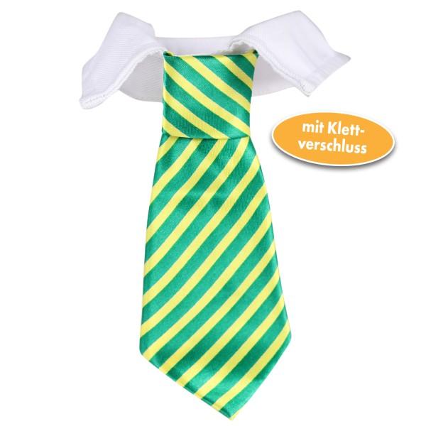 Krawatte mit Kragen für Haustiere